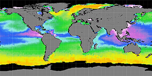 Sea surface density, July 2012