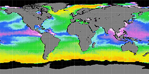 Sea surface density, August 2014