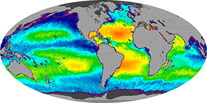 Global sea surface salinity, December 2014