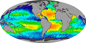 Global sea surface salinity, June 2015