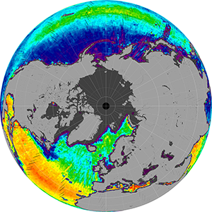 Sea surface salinity in the Northern Hemisphere, June 2015