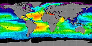 Global sea surface salinity, Summer 2011