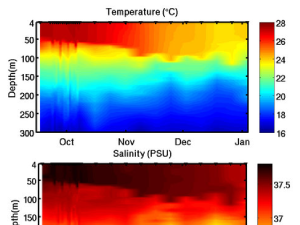 Temperature and salinity graphs from Argo Float #7572