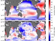 Trends in global salinity