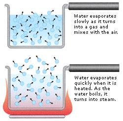 Evaporation of water