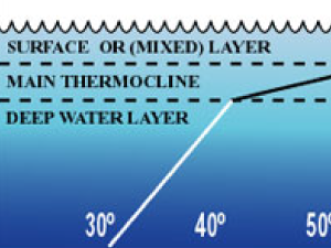 Ocean temperature profile