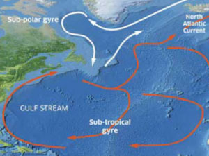 North Atlantic subtropical gyre